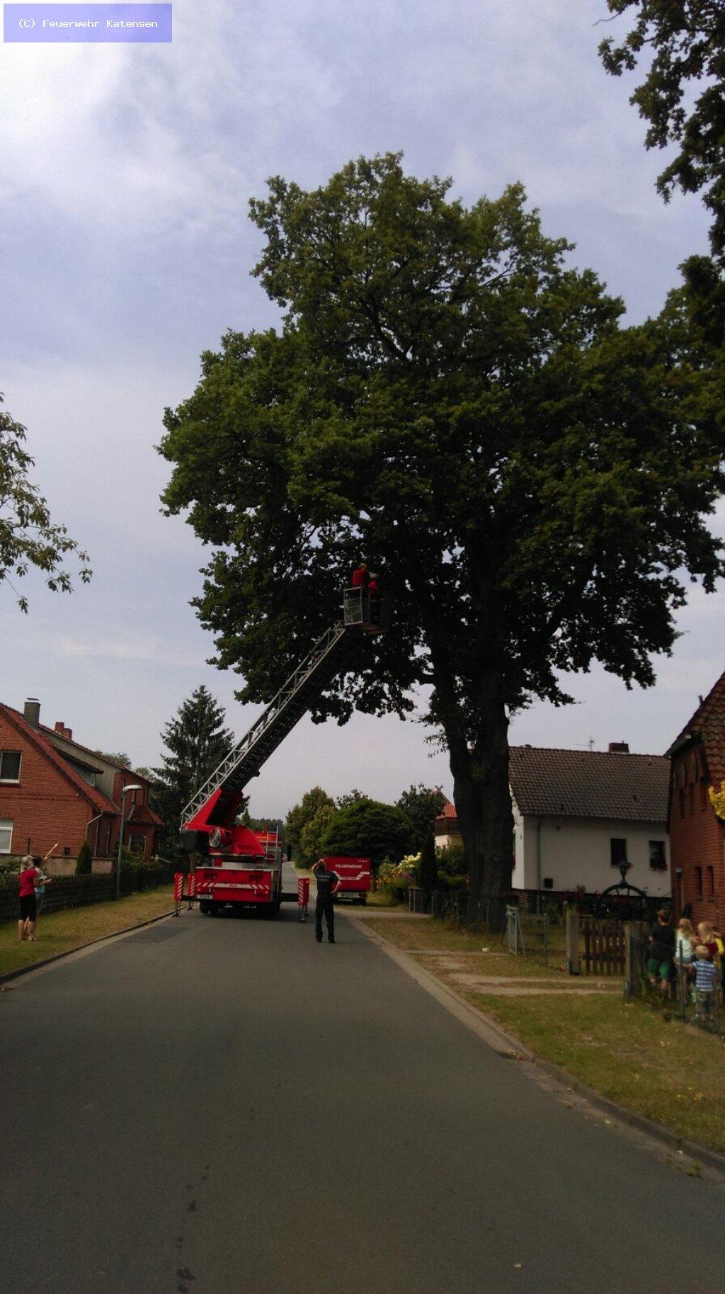 Tierrettung vom 22.07.2016  |  (C) Feuerwehr Katensen (2016)